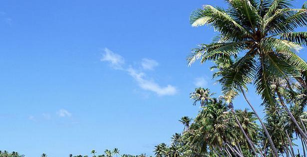 呀诺达雨林景区位于海南省三亚市保亭黎族苗族自治县,距三亚市区