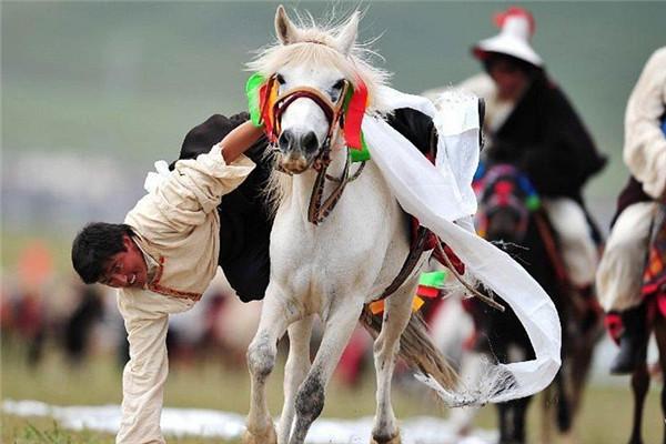 香格里拉赛马节6月启幕 点燃高原盛夏激情