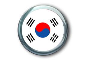 韩国旅游签
