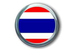 泰国旅游签