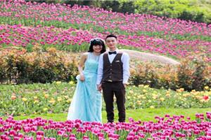 长寿湖郁金香、风车节、菩提古镇一日游