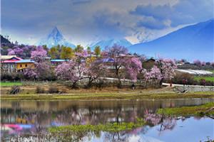 西藏拉萨、林芝八日游