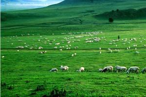 内蒙古呼和浩特、大草原双飞五日游