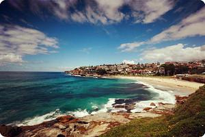 澳大利亚9天 两天海豚岛生态体验课程