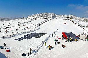冰雪季|重庆武隆-仙女山滑雪休闲一日游