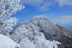 日本九州魅力精品6日游