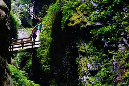 武隆天生三桥、龙水峡地缝、仙女山纯玩二日游