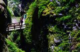 武隆仙女山、天坑三桥、蚩尤九黎城二日游