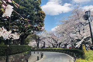 重庆直飞日本大阪东京往返6日游早订立减400-800/人
