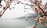 北京天安门+故宫+八达岭长城+颐和园+天津往返双飞六日游