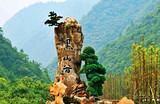 万盛丛林蘑菇总动员、万盛黑山谷一日游