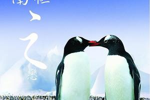 寒假去南极旅游攻略线路价格:經典南極半島奇航探险17日之旅