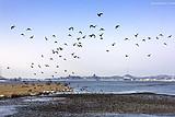 去俄罗斯旅游攻略 伊尔库茨克贝加尔湖莫斯科圣彼得堡金环10日