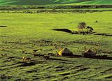 十一月北京去新疆旅行团多少钱 天池吐鲁番那拉提草原双卧10天