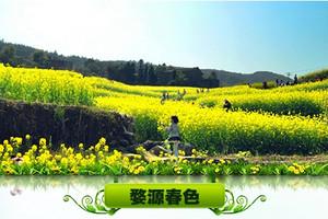 郑州去婺源油菜花双卧6日游_春季赏花游