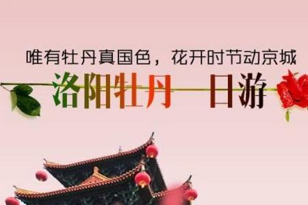 郑州到洛阳牡丹周边一日游(少林寺+龙门石窟+牡丹花)