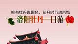郑州周边赏花一日游_郑州到洛阳牡丹花 龙门石窟一日游