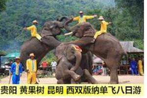 郑州夕阳红旅游团 郑州去云南西双版纳单飞8日游