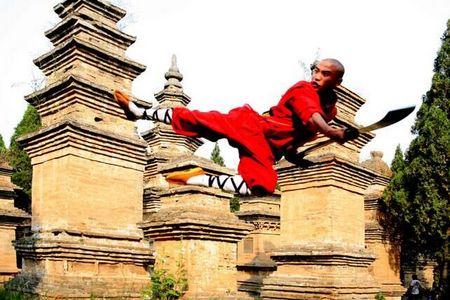 洛阳牡丹节_郑州到少林寺、神州牡丹、龙门石窟、纯玩一日游