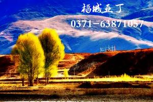 郑州出发到稻城亚丁双飞8日游游旅游报价_稻城亚丁旅游攻略