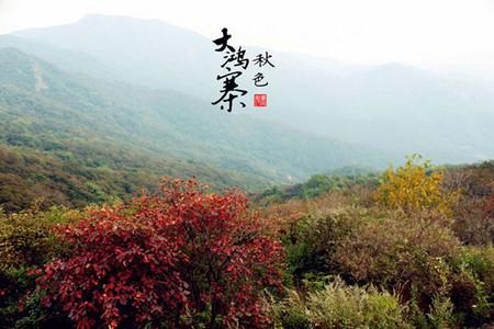 郑州出发到大鸿寨一日游旅游团
