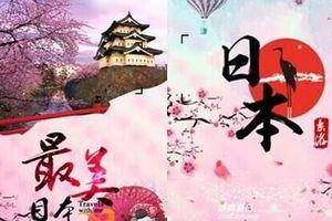 日本旅游攻略_郑州出发到日本东京、大阪、京都、奈良全景七日游