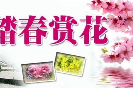 郑州到洛阳牡丹周边一日游(白马寺 龙门石窟 牡丹园)