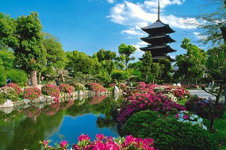 郑州去日本旅游团_郑州到日本双飞6日游多少钱_郑州康辉旅行社