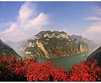 7月:相逢重庆——遵义会址、重庆、洪崖洞、轻轨穿楼、酉阳桃花