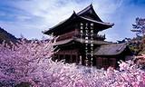 4-5月 日本本州半自助七日游