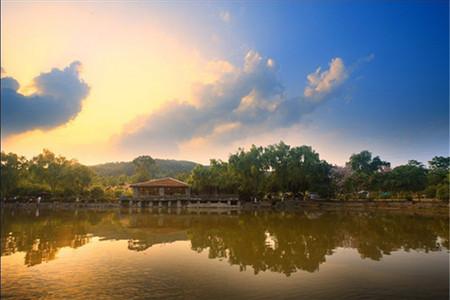 南宁出发柳州奇石馆,文庙,君武森林公园休闲二日游