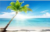 6月:分界洲岛、南山、天涯海角、亚龙湾沙滩、夜游三亚双飞5日