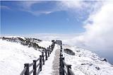 3月:昆明海埂大坝、轿子雪山、动车纯玩3日游
