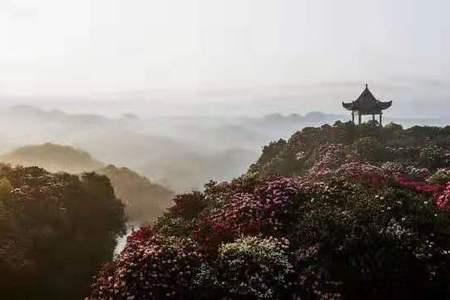 貴州平壩萬畝櫻花、青巖古鎮、畢節百里杜鵑花純玩純攝影汽車三日