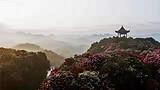 贵州平坝万亩樱花、青岩古镇、毕节百里杜鹃花纯玩纯摄影汽车三日