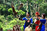 隆安龙虎山戏猴+大新龙宫仙境纯玩一日游
