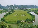 (独立包团)上林霞客古渡竹排观光,万古茶园纯玩一日游