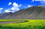 北京到西藏拉萨旅游报价_价格_费用_价钱_双飞4日游