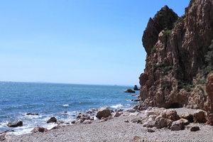 <蓬萊、長島兩日游>淄博去蓬萊、長島旅游 漁家4-6人間