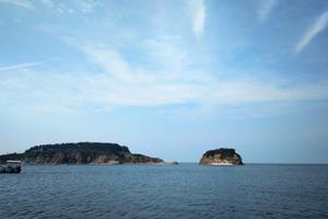 【青岛市内、野生森林动物世界、黄岛金沙滩】纯玩二日游
