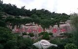 青岛崂山(北九水)二日  赠送中山公园 淄博出发旅游
