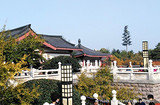 【陜北風情】延安、黃帝陵、壺口瀑布、兵馬俑、華清池雙飛五日游