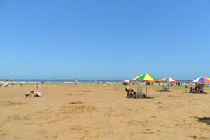 【优质日照】日照海之秀优质海鲜大咖纯玩二日游