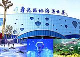 【寿光极地海洋世界一日游】海洋生物旅游观光、海豚剧场表演