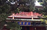 【仙境海岛之旅】蓬莱阁+长岛休闲2日游  中国四大名楼
