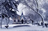 郑州到哈尔滨旅游六日游_哈尔滨滑雪价格是多少