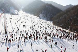 郑州到木札岭速龙滑雪一日游_郑州滑雪一日游_郑州附近滑雪团