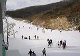 嵩山滑雪滑草场