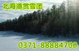 郑州到日本旅游团报价_日本东京富士山大阪北海道四飞八天赏雪团