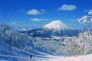 郑州到日本韩国旅游团_日本韩国连线十日之旅